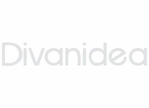 DIVANIDEA