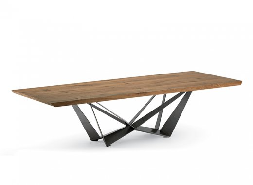 Skorpio Wood **<br>100x200